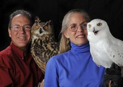 eyes on owls